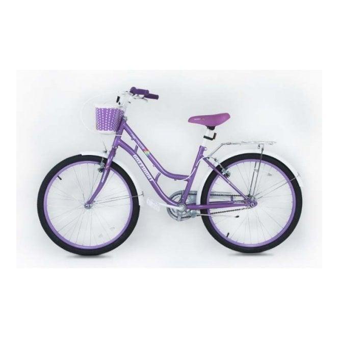 Kids Bikes KB 01:GIRLS 20 INCH STEEL MOUNTAIN BIKE