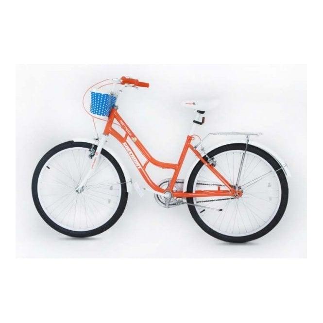 Kids Bikes KB 03:GIRLS 24 INCH MOUNTAIN BIKE