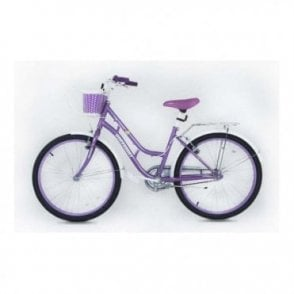 KB 01:GIRLS 20 INCH STEEL MOUNTAIN BIKE